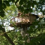 Cabane-nid-d-aigle-dormir-dans-les-arbres
