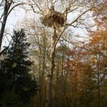 Cabane-nid-d-aigle-exceptionnelle
