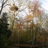 Cabane-nid-d-aigle-point-de-vue