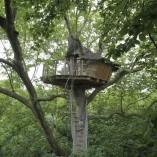 cabane-dans-arbres-normandie-nid-daigle