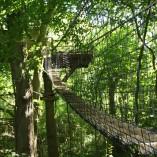 Weel-end cabane Laizon dans les arbres 10m