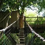 Weel-end cabane Laizon dans les arbres pont de singe