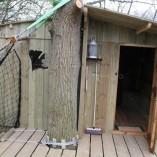 Weel-end cabane Laizon dans les arbres insolite
