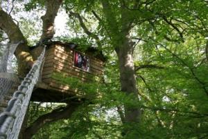cabane arbre cascade