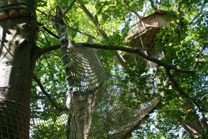 cabane arbre haute