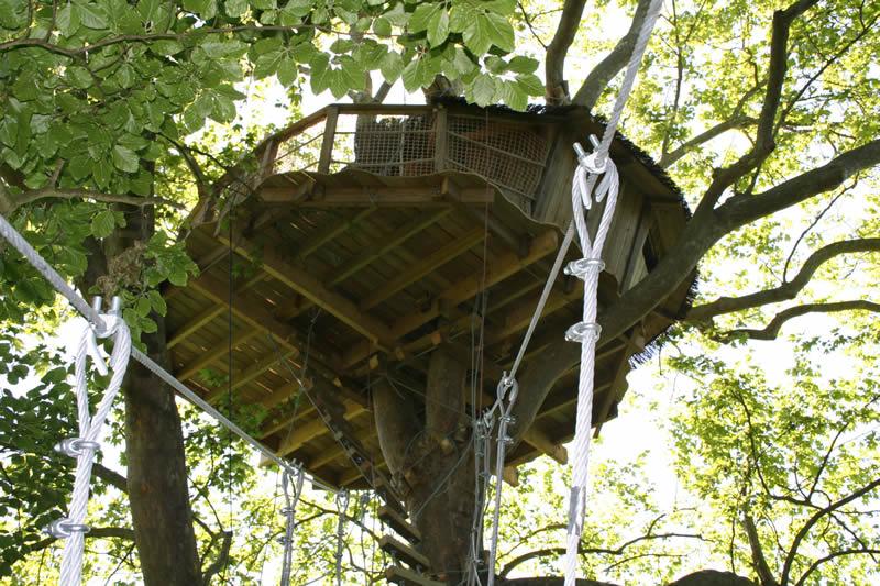 Cabane nid d'aigle, monter dans les arbres