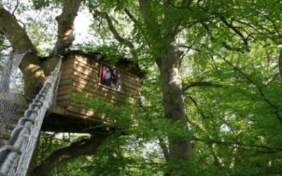 Les cabanes dans les arbres de Canon