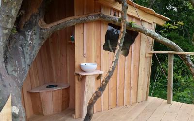 Construction d'une nouvelle cabane dans les arbres