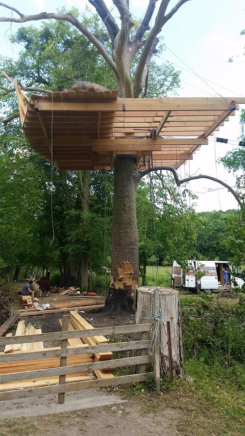Construction De Cabane Dans Les Arbres construction d'une nouvelle cabane
