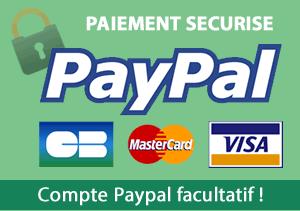 Payement sécurisé
