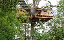 cabane-arbre-louer